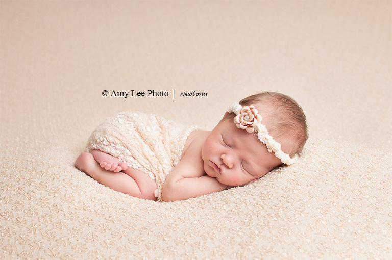 Photographer Interview with Amy Lee Photo | Hosted by  Baby Joy Studios Photo props
