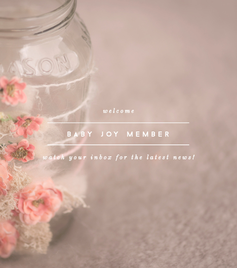 Baby Joy Studios | Photography Props